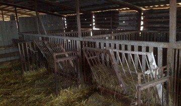Изображение кошары для овец, fermer.ru