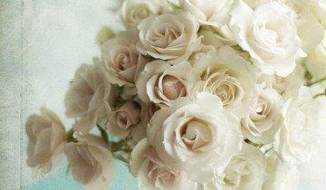 Букет роз, lifesguide.ru