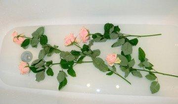 На ночь кладите розы в воду, hobbit-yasnaya.diary.ru
