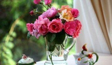 Розы могут простоять до двух недель, elitefon.ru