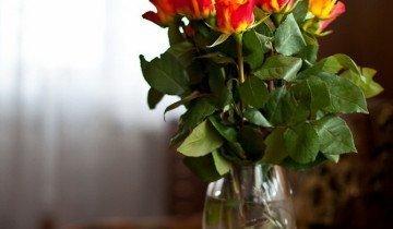 Букет роз в вазе, andrey.fotoplex.ru