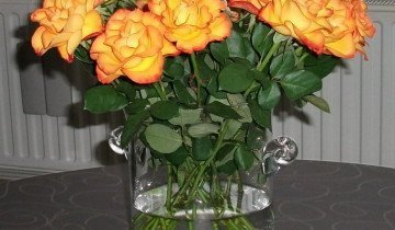 Букет желтых роз, photo-collectionz.blogspot.com