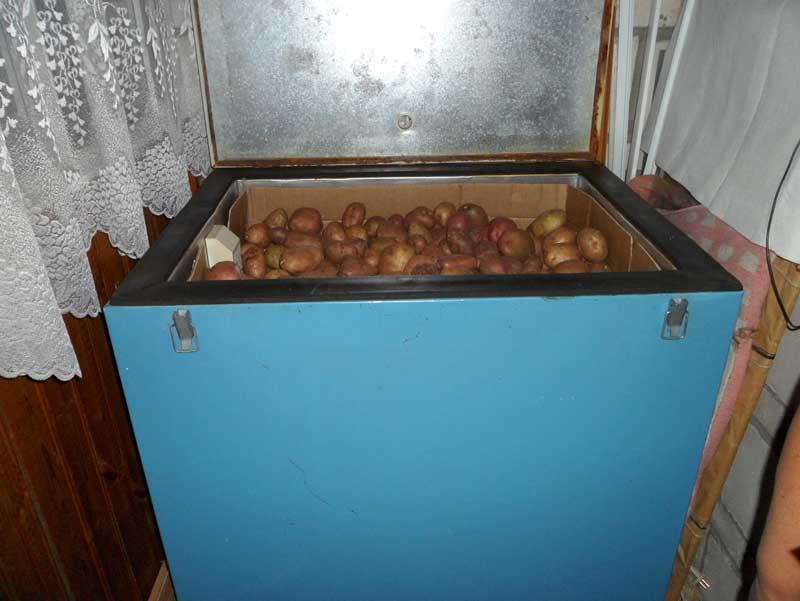 Ящики для хранения овощей на балконе зимой своими руками
