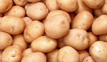 От эффективных дедовских методов хранения картофеля до современного подхода