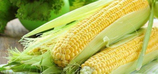 Вареная кукуруза при панкреатите - c60