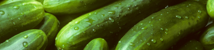 Огурцы в теплице и грунте
