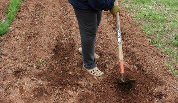 Подготовка почвы, blogspot.com