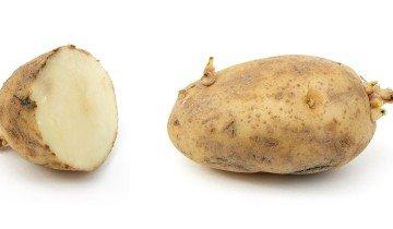 Какой картофель сажать, wikimedia.org