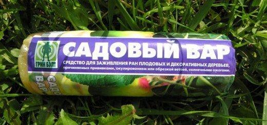 Садовий вар, glazovo7.ru
