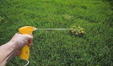 Приспособление для распыления гербицидов