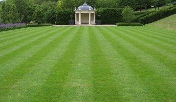Партерный газон в парке