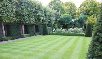 Партерный газон в ландшафтном дизайне