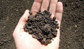 Детальный анализ почвы, endata.cx