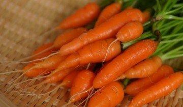 Питательная морковь