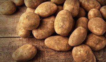 Выращивание картофеля по методу Митлайдера, roadtripsrus.com