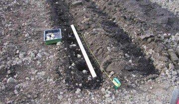 Садим картофель, allotment-garden.org