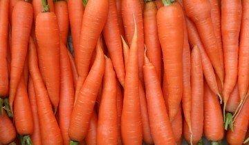 Морковь для уток