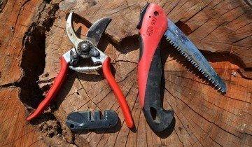 Инструмент для обрезки смородины, ecologiadesign.files.wordpress.com