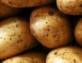 Молодой картофель, agrobk.ru