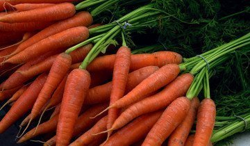 Фотография моркови хорошего качества, sadoved.com
