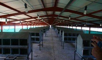 Фото металлических гнезд на ножках, chicken-farming.com