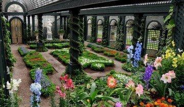 Фото цветущего зимнего сада, sad.ru