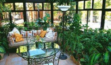 Фотография зимнего сада в доме, nasotke.ru