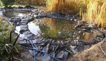 Изображение пруда для разведения рыбы, uniqway.com