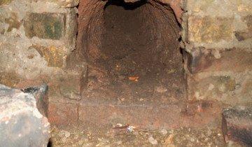 Фото норы в кроличьей яме, zoo-farm.ru