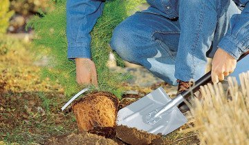 Снимок применения штыковой лопаты, eco-retail.com