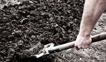 Изображение садовой лопаты, deita.ru