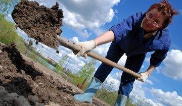 Применение титановой штыковой лопаты , dljadachnikov.ru