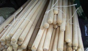 Изображение березовых черенков, stroyboard.su
