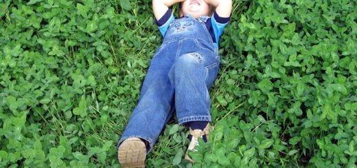 Ребенок на газоне из клевера, yandex.ru