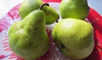 Фото мелких плодов груши, liveinternet.ru