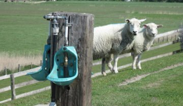 Ниппельная поилка для овец, agroanimal.com