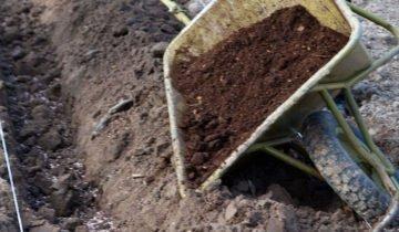 Фотография канавы для саженцев, superdom.ua