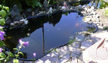 Фотография пластикового пруда для дачи, sekret-mastera.ru