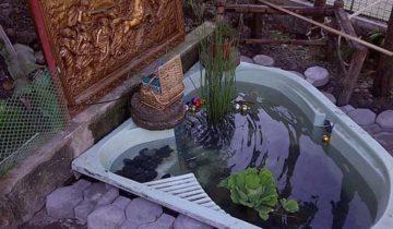 Готовый пруд из старой ванной, tnn-garden.ru