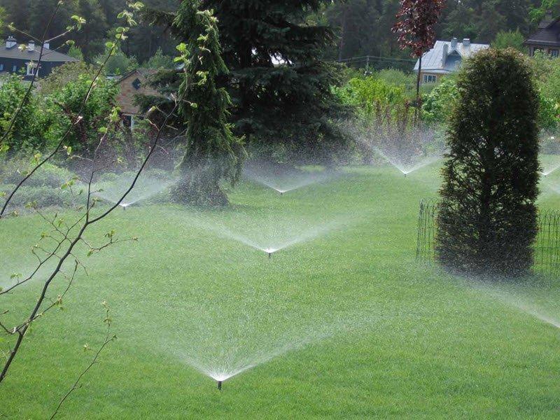 Снимок автоматической системы полива газона