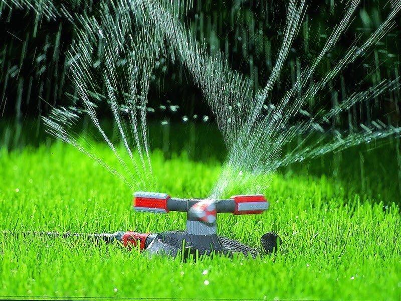 На снимке полив газона