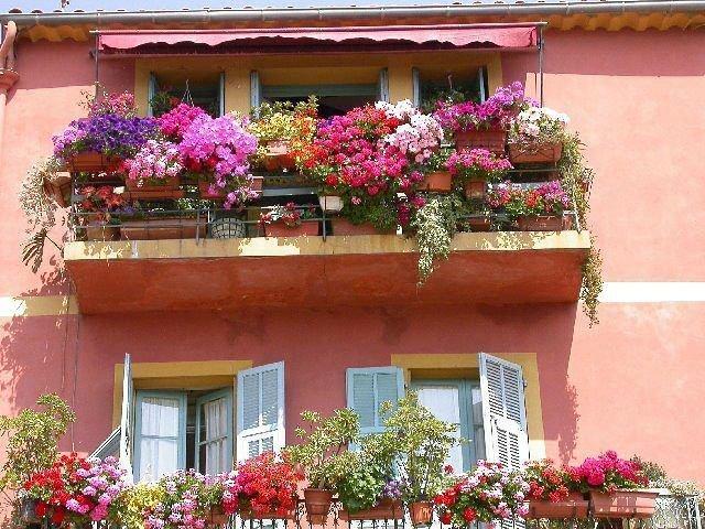 На изображении балкон, оформленный крупноцветковыми петуниями