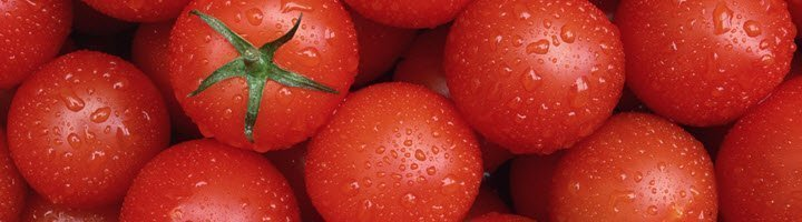 Сорта розовых помидор
