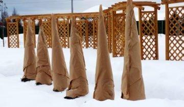 Защита на зиму