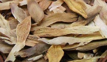 семена плюмерии в корзинке