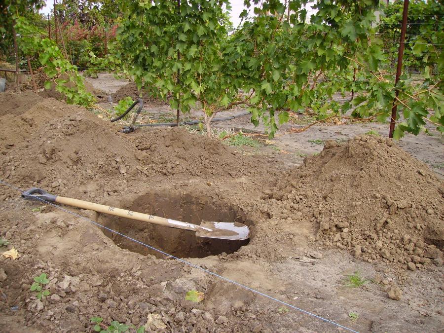 Выкопанная посадочная яма