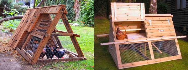 Как построить летний курятник своими руками на 10 кур