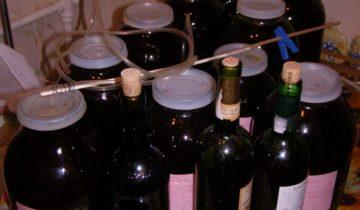 Малиновое вино, разлитое для дозревания