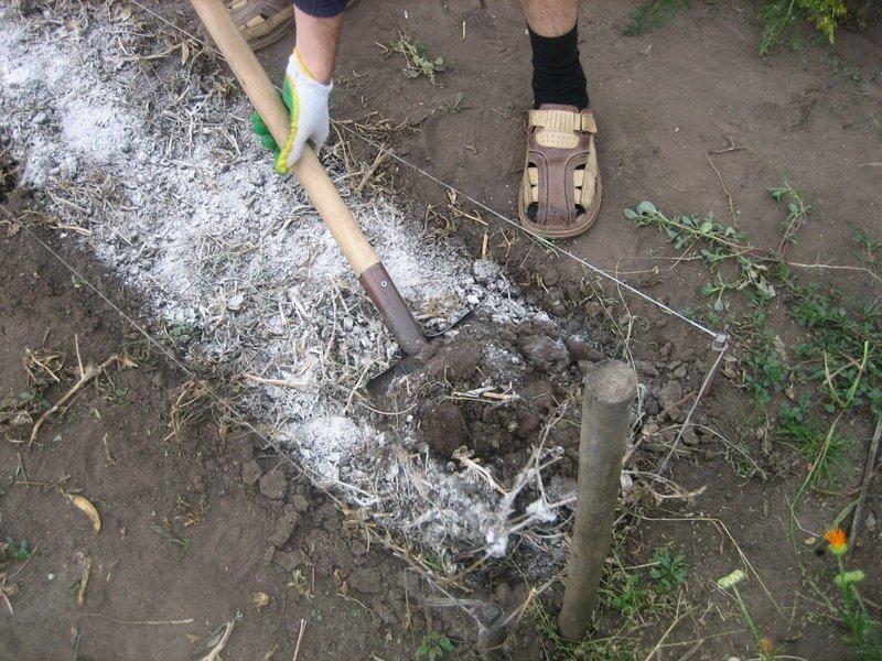 Перекопка почвы на грядке