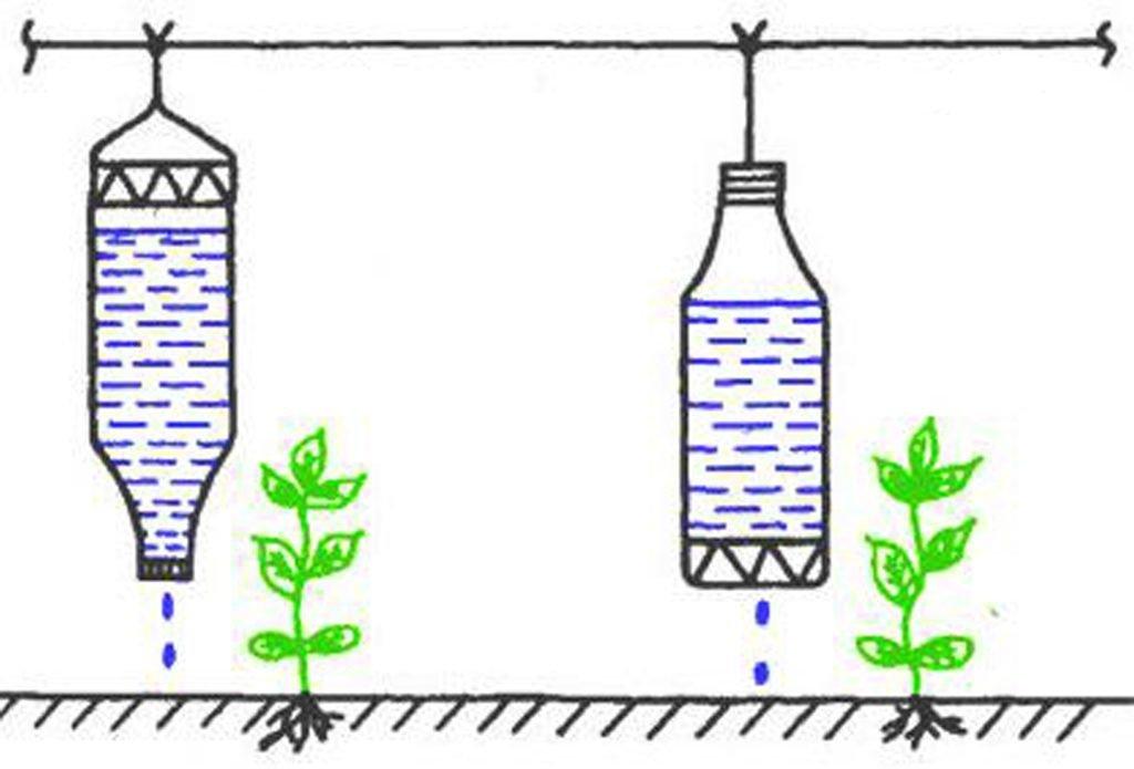 Как сделать капельный полив в теплице